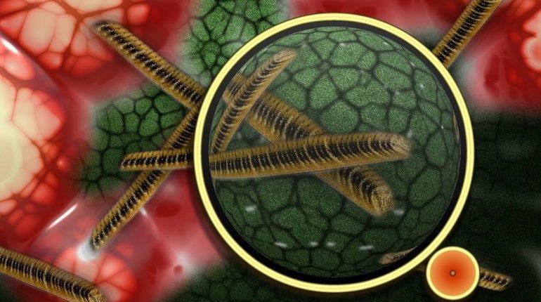 Παγκόσμιος τρόμος για επικίνδυνο μικρόβιο